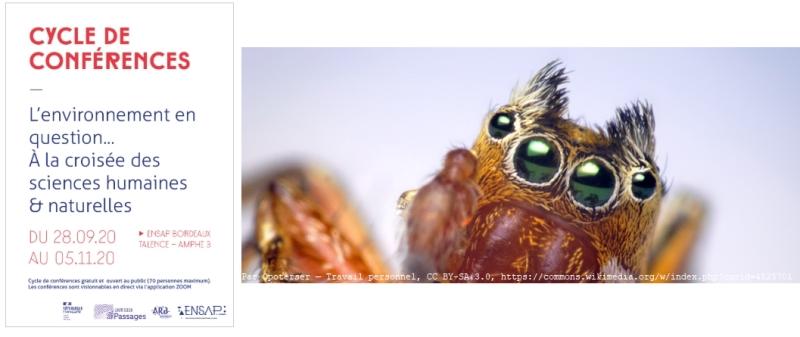 Nouvelle séance en ligne sur l'environnement et les #SHS !  Ni domestique, ni sauvages : à la rencontre de ces #animaux qui nous questionnent par Laine Chanteloup >30/09 18h sur zoom https://t.co/emLA0jK8kP #géographie #spider #araignée https://t.co/sw4ph75kBf