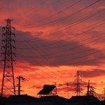 Image for the Tweet beginning: 電気は空を伝ってやってくる  #電気 #送電線 #電線 #高圧線 #鉄塔