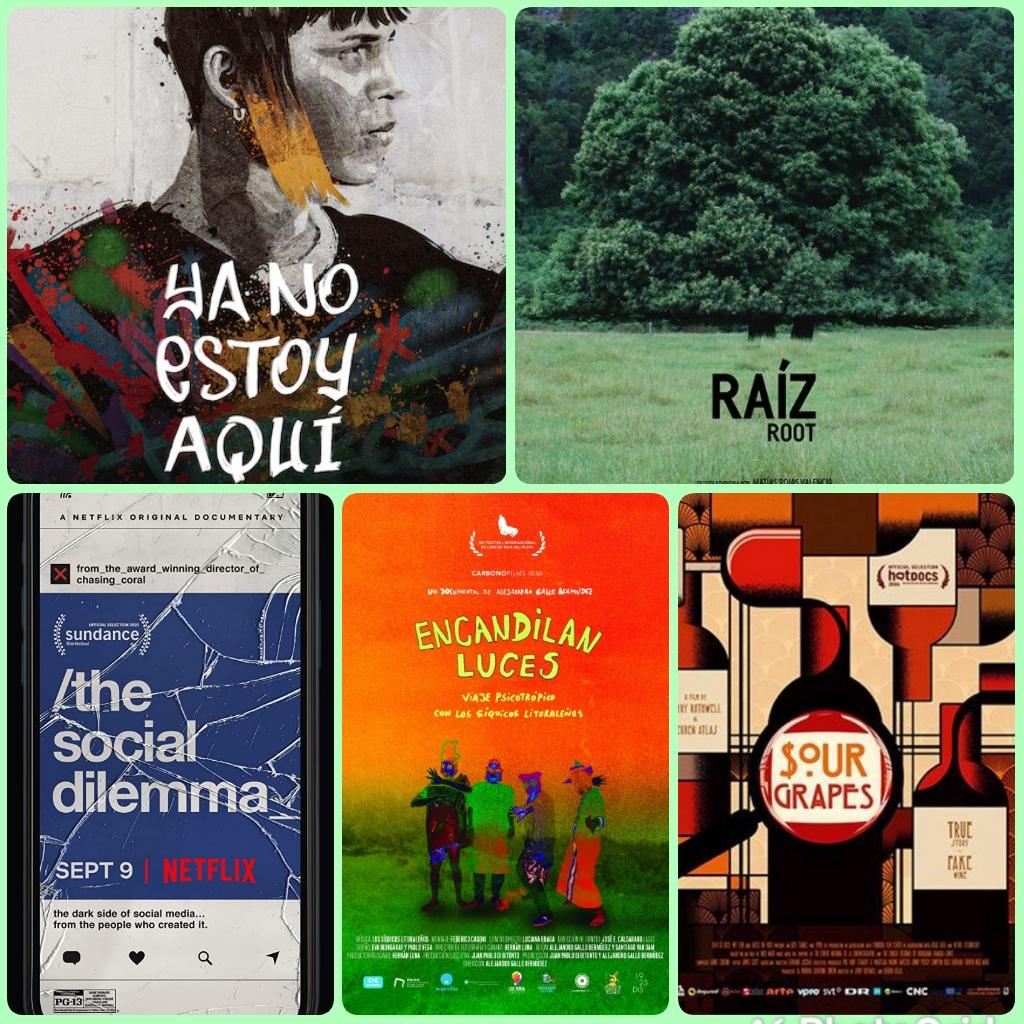 Hoy 25/09, 17:40 #Santiago, SIGNIS #Chile nos invita a sintonizar su espacio de recomendaciones de películas en @radiomariachile https://t.co/8d8B0zmaZe  Hoy se analizarán Ya no estoy aquí, Raíz, El dilema de las #RedesSociales, Encandilan luces y Sour Grapes   @CineyEstilo https://t.co/Ch6dDLEDhJ