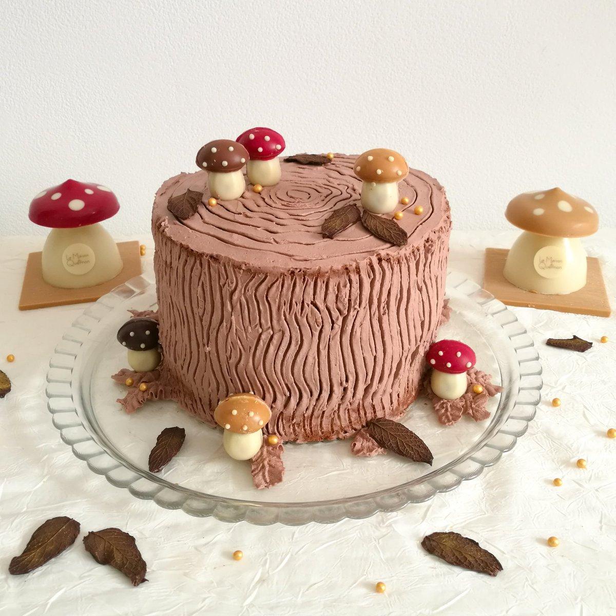 Mon gâteau trompe-l'œil d'automne avec les jolis 🍄 de La @MaisonDuQuernon 🍂  Bon week-end à toutes et à tous ❤ #angers #chocolat #recette #automne #faitmaison https://t.co/oA7kp9YdIM