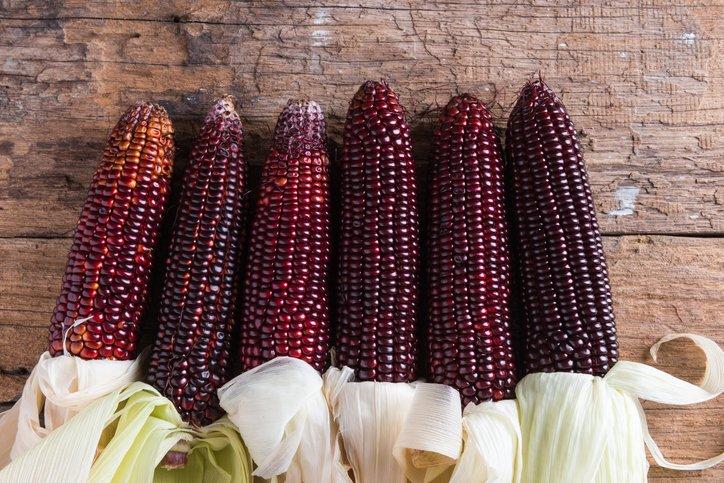 """El #maíz morado o azul se ha utilizado durante miles de años por los incas y las civilizaciones de la región. Por este motivo se lo suele encasillar como un """"superalimento"""".https://t.co/jx749ytN7y  #Alimentacionsaludable #salud #Comida #HealthyFood https://t.co/OYPK1mA0ew"""