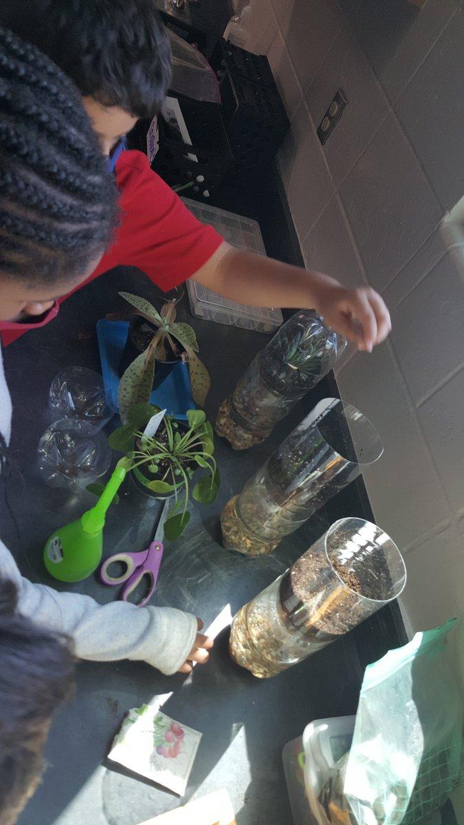 Bringing a little bit of second grade to 5th grade! We built eco-columns to observe! Love life science! Guppies, snails, and elodea coming soon 😉 #GrowingLeadersOwens #Kidsdeserveit #CFISDspirit @cfisdowens @CFISDScience @CyFairISD https://t.co/GQEdda2veF