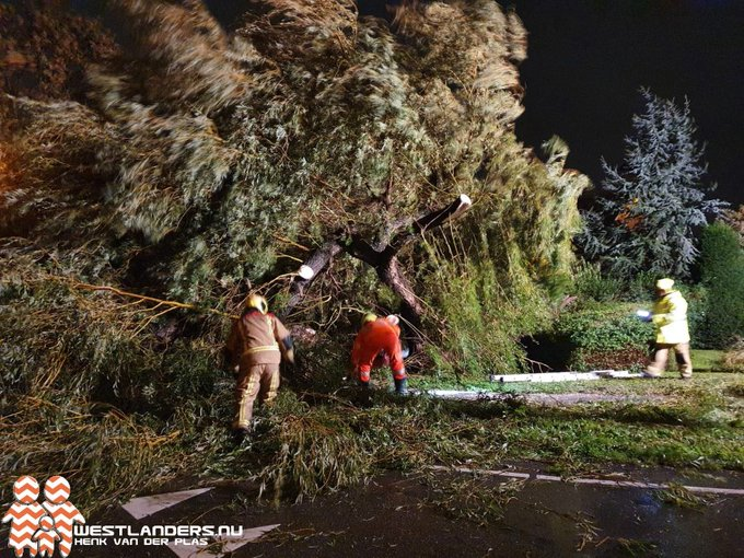 Diverse stormschades in regio Westland https://t.co/qFqEWS2ASt https://t.co/lXhSg5XYXP