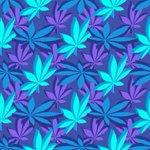 Image for the Tweet beginning: #cannabis #marijuana #weed Why Aurora