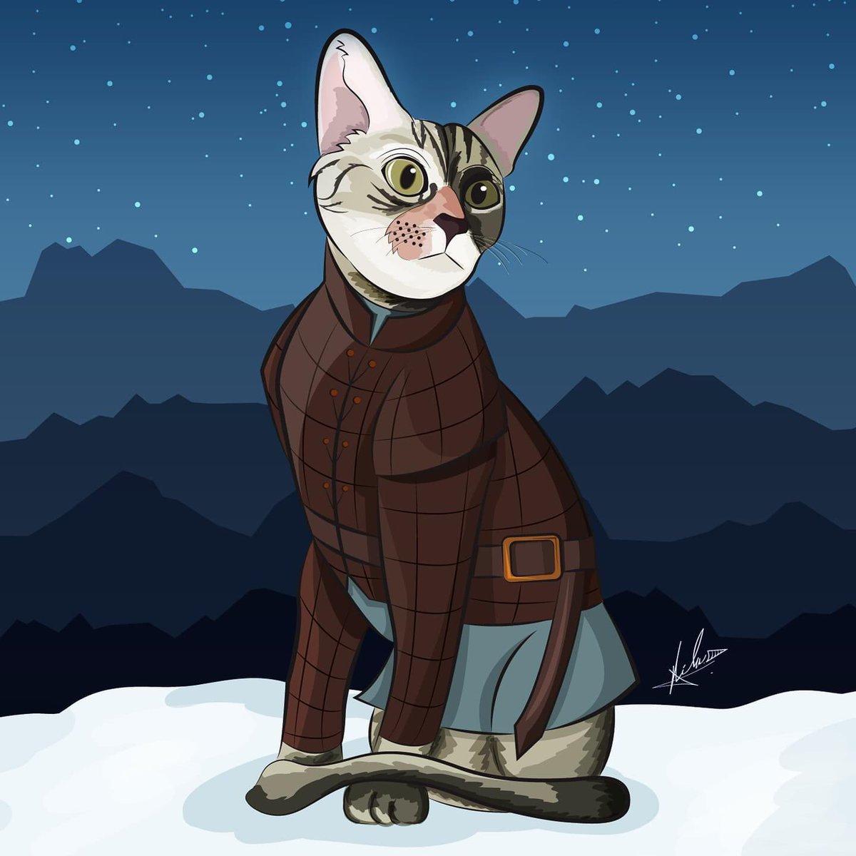 Aparte de dibujar a MAPA, también ilustro mascotas entre otras cosas. Comisiones próximamente... #Mapachink #AryaStark #VectorArt #Cats #Cat #Gatitos #Gato  #illustration #Ilustración #Art #Vector https://t.co/Yhi0bb96o0