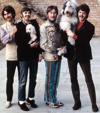 2 Dogs-With The Beatles Getting In The Way @rickygervais @pupaid @themayhew #AnimalLove #AnimalRights #AnimalWelfare #Equality #TheBeatles https://t.co/xVsxcQj4mF