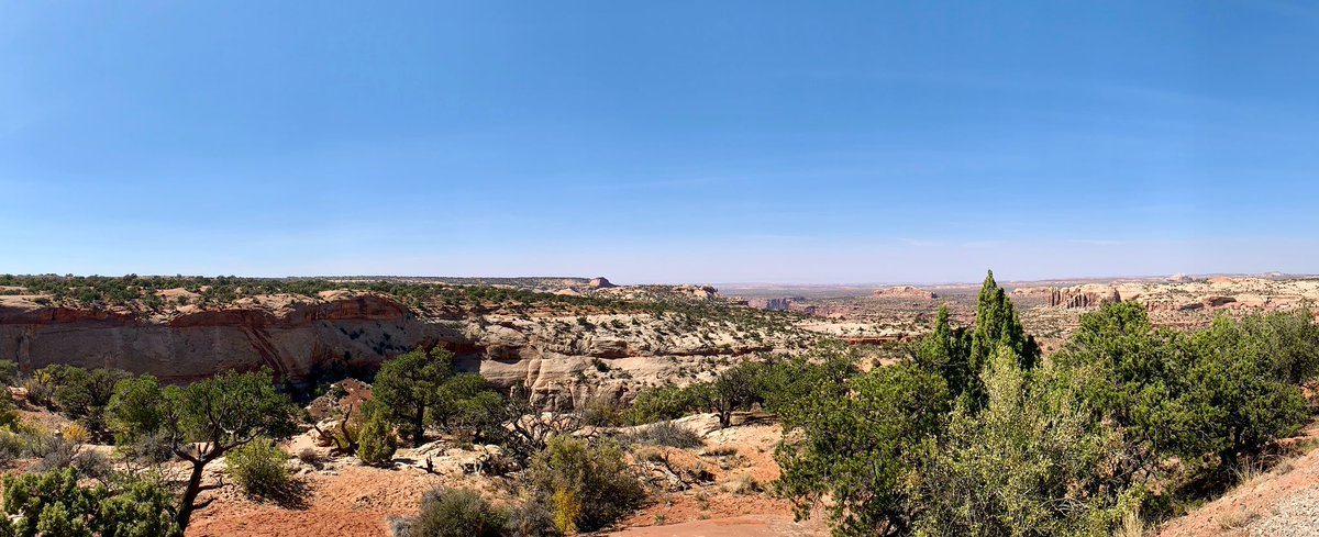 Some highlights from Canyonlands National Park, today! Spectacular views! 😍 #UT #infj #introverts #travel #nature #introvertlife #safetravel #introvertlife #Utah #canyons #selfcare #recharge https://t.co/d9zMTkBH6x