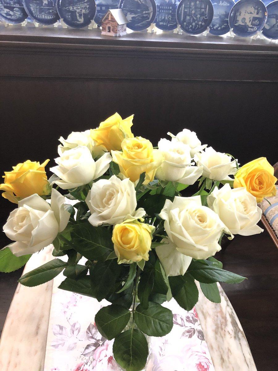 おはようございます。 9月26日土曜日、本日の薔薇🌹 #cafe   #カフェルーエ #紅茶 #珈琲 #ケーキ #スコーン #薔薇 #筑井先生 #前橋 #富士見 ☎️027-288-2824 https://t.co/SK700OpXwc
