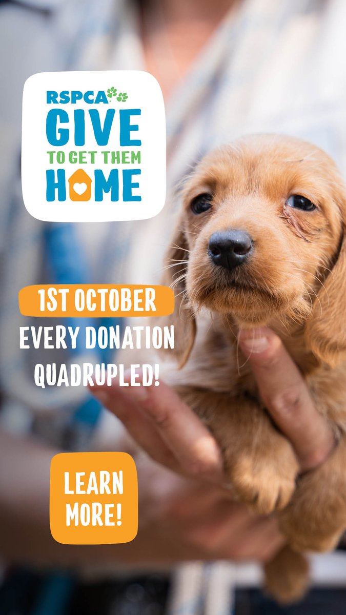 @RSPCAQld Give to Get Them Home fundraiser is on this Thursday!! Donations made on this website will be Quadrupled!! RSPCA Qld is a not-for-profit charity fighting animal cruelty. #rspcaqld #fundraiser #donate #AnimalWelfare https://t.co/4KzpulTIDM https://t.co/gfg3jdRsv3