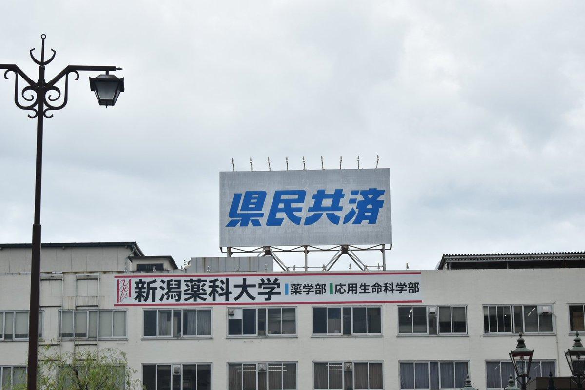 共済 新潟 県民