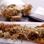 Image for the Tweet beginning: #cannabis #marijuana #weed Ten Flavorful