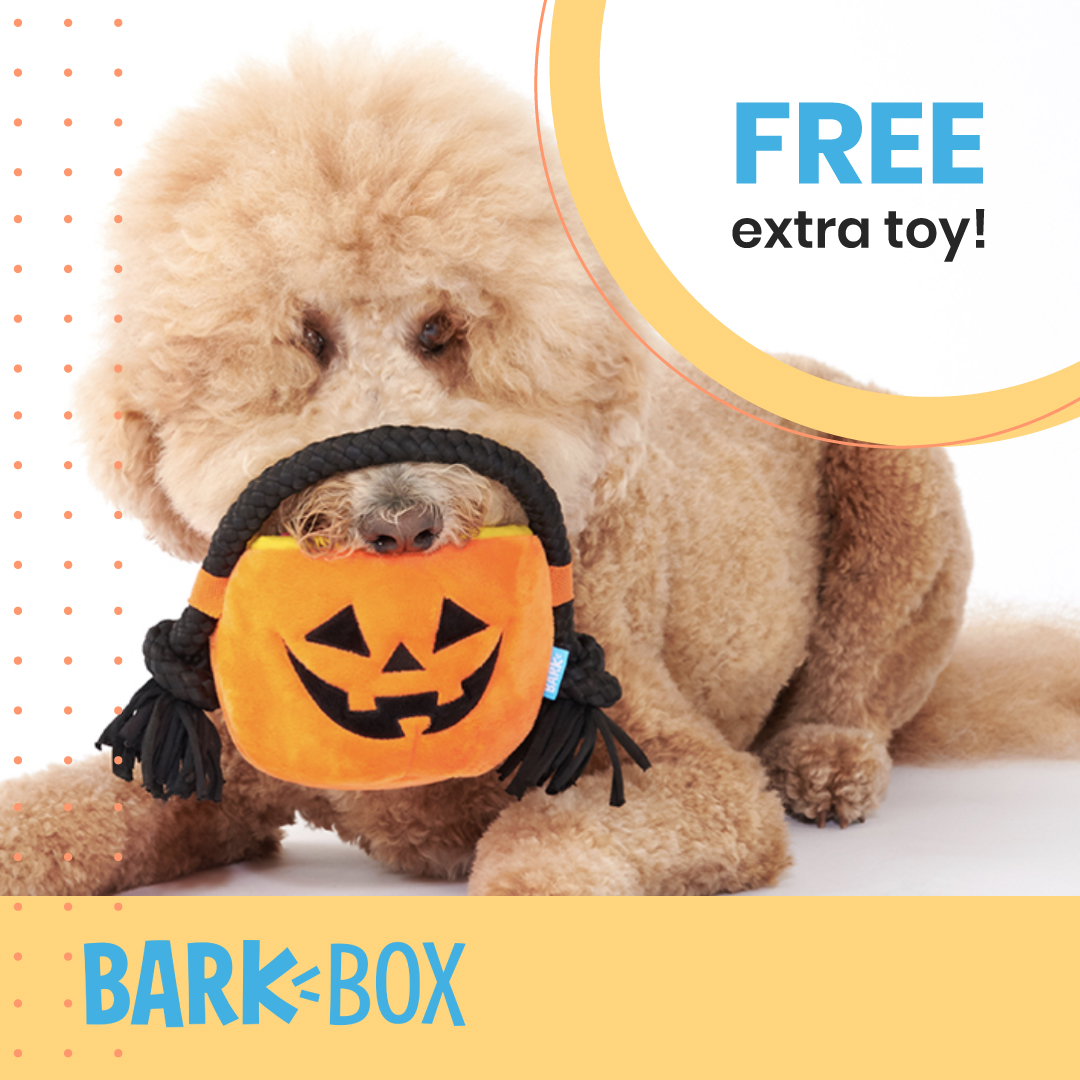 Get your pet a #TREAT (not trick) this Halloween. You'll get a free extra toy in EVERY box when you sign up for @barkbox! PLUS it's Halloween themed!  Sign up with this link for the deal: https://t.co/8E7PyA3pSa  #DogPeopleGetIt #DogsOfBark #PraiseDog #Halloween #LoveForDogs https://t.co/uIgUd4M9x2