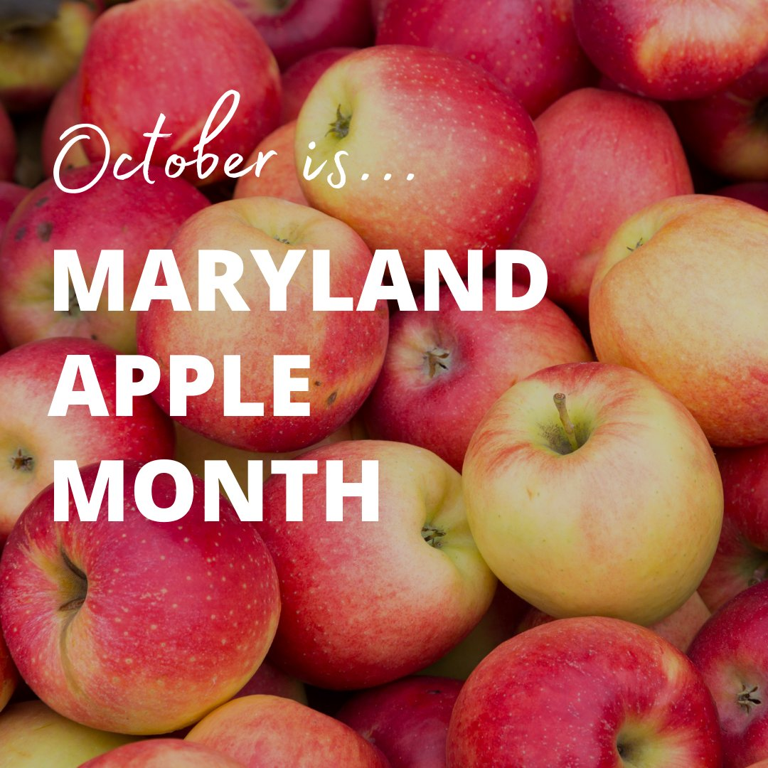 Orchardists around the state of #Maryland are growing more than 20 different #apple varieties. Celebrate #MarylandAppleMonth by purchasing locally-grown apples directly from a farm stand or farmers market and by visiting a Maryland #orchard. https://t.co/7UPYzbA9GA #MyMdFarmers https://t.co/vFRwpcmIjN