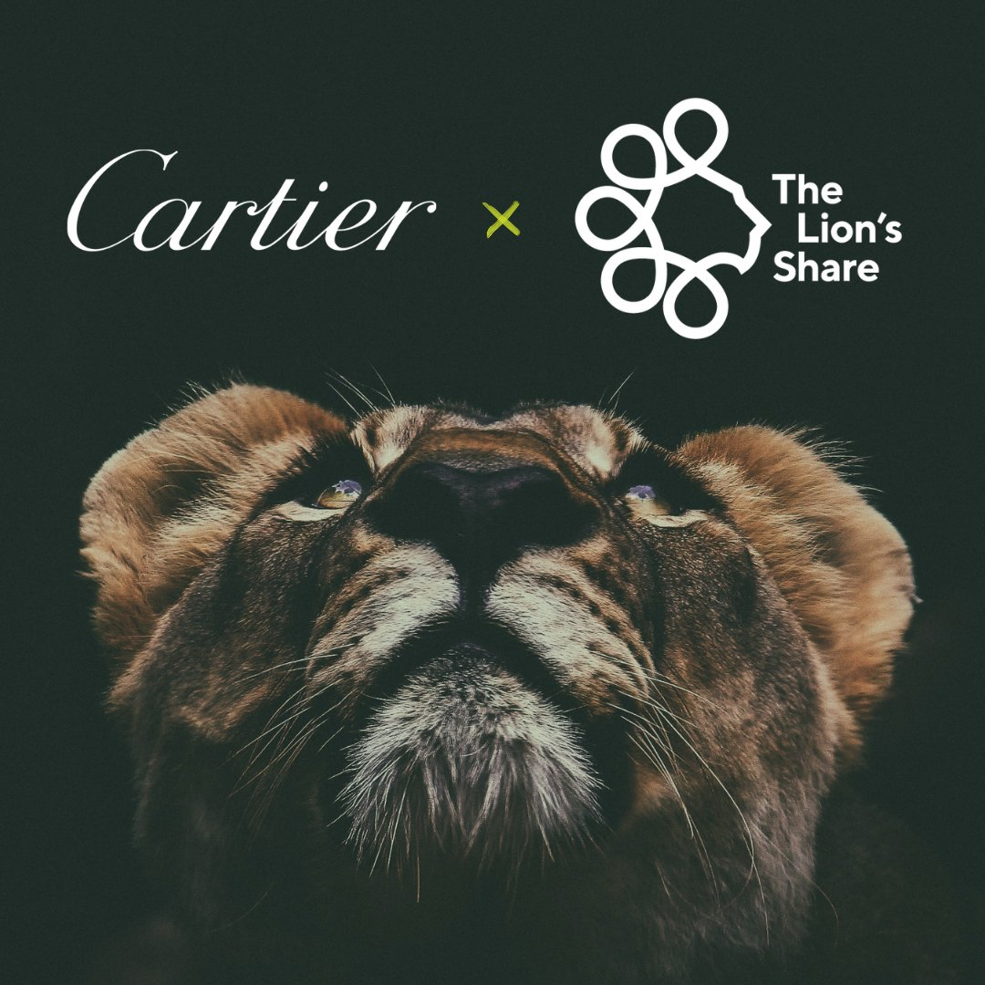 We are delighted to announce @Cartier's recent partnership with the @LionsShareFund, an innovative @UNDP-led initiative working to halt biodiversity loss and protect habitats.   More information: https://t.co/DLv2f4f3pJ https://t.co/75vSBsuG4Q