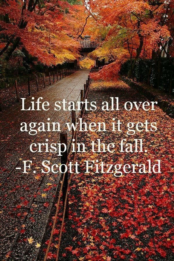 Sometimes we need a Re-Start ! . #life  #startover  #restart  #crispair  #pivot  #refocus  #regroup  #replan  #whatsimportant https://t.co/yZRnTMixrv