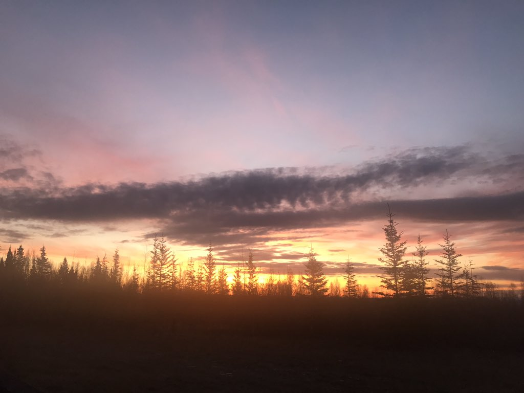 ぐっどもーにんぐ フェアバンクス!Good morning Fairbanks! また新しい朝が来ました。今日も頑張って薪作り。 #フェアバンクス #キャンプ #朝日 #sunrise  #faifbanks https://t.co/DTaXdpuU1t