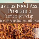 Image for the Tweet beginning: 🚨REMINDER!🚨 USDA is providing additional assistance