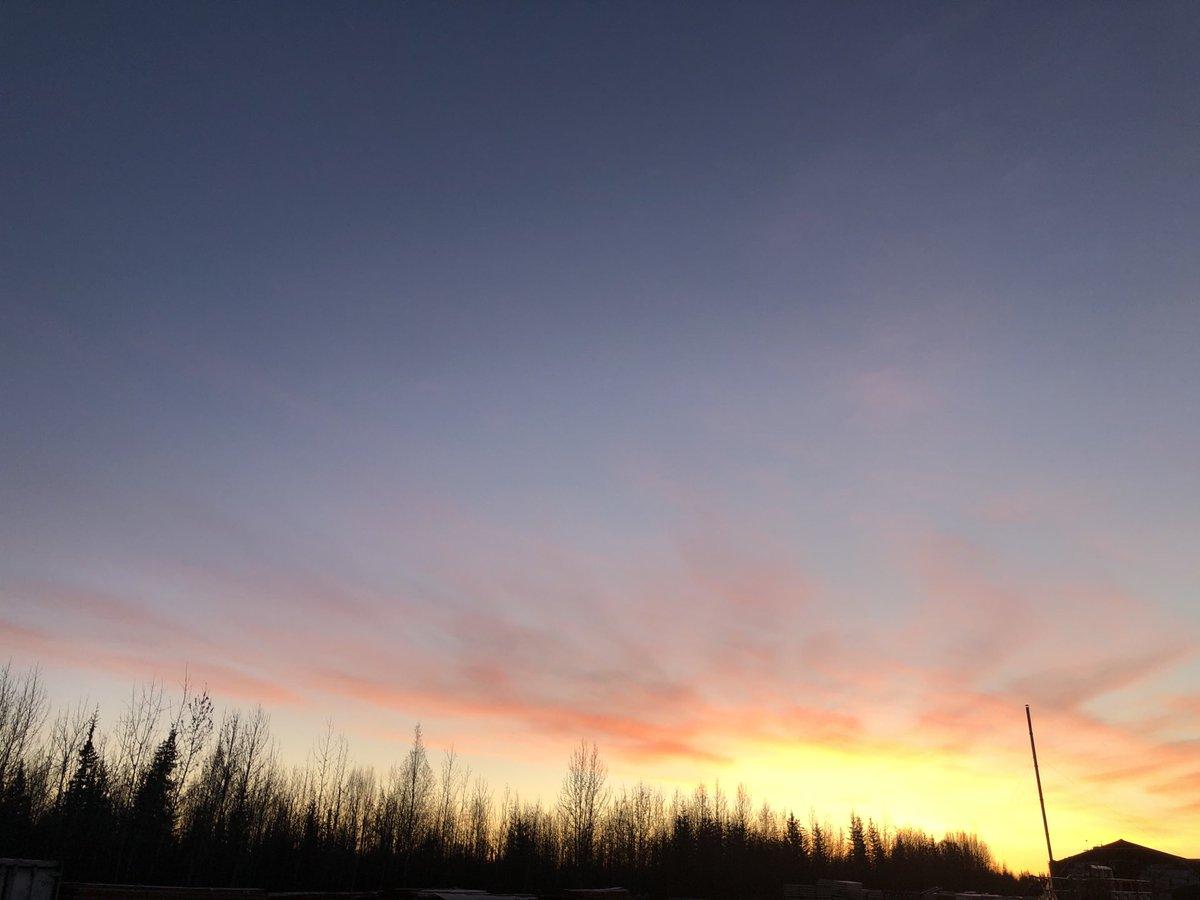 おはようございます!朝8時のフェアバンクスの空です。日照時間が短くなる来月には、この時間に陽の光は見えなくなります。もう少し朝陽を楽しみます!#アラスカ #フェアバンクス #朝陽 #日照時間 #alaska #fairbanks #sunrise #daylight https://t.co/Ibuwe6xroY
