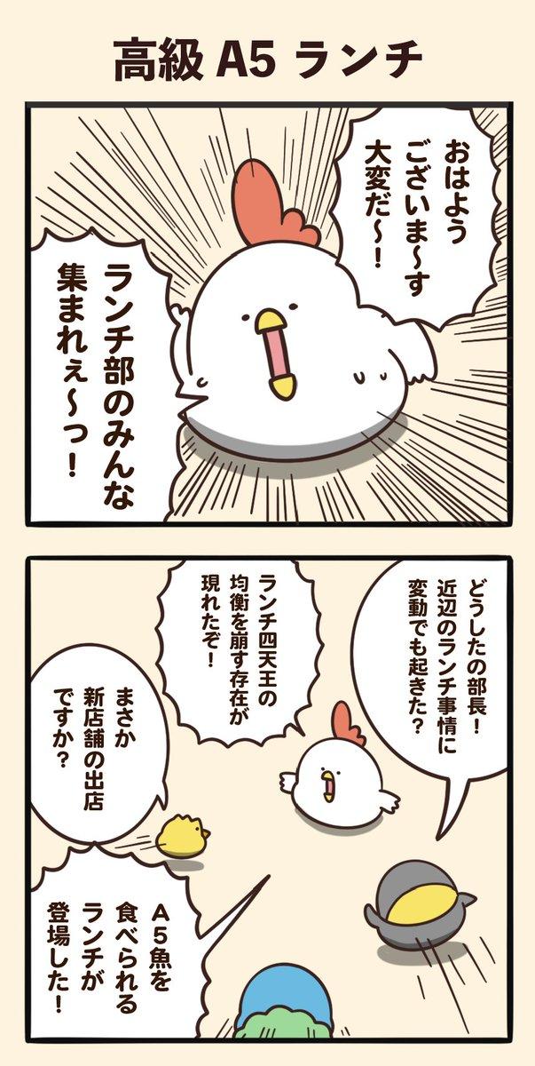 高級A5ランチ https://t.co/guc6Xh0Alv
