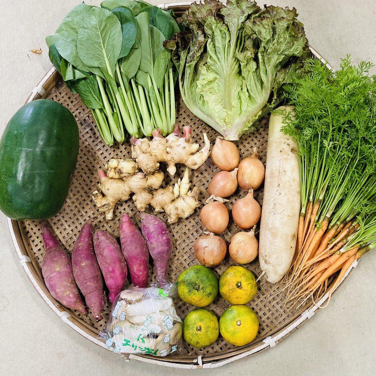 野菜 そら の