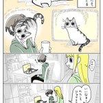 邪魔をしてほしい人には塩対応?www天邪鬼なところも可愛い猫の漫画!