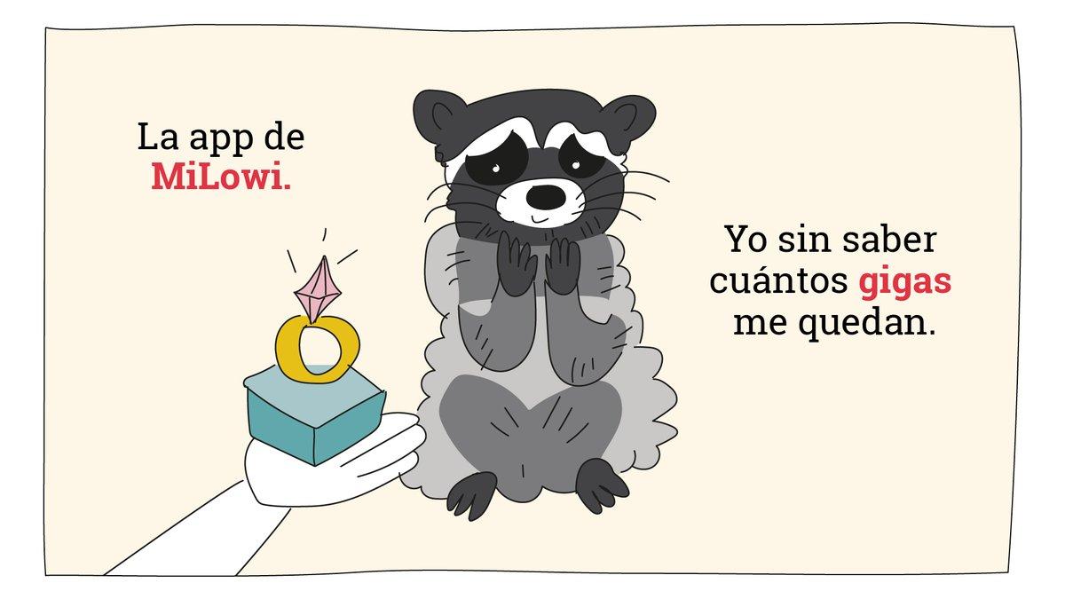 No hay forma de expresar lo que sientes por tus gigas, pero este mapache sí la tiene 😻.  #Lowimeme #FelizFinde #App https://t.co/2D8NLba8UL