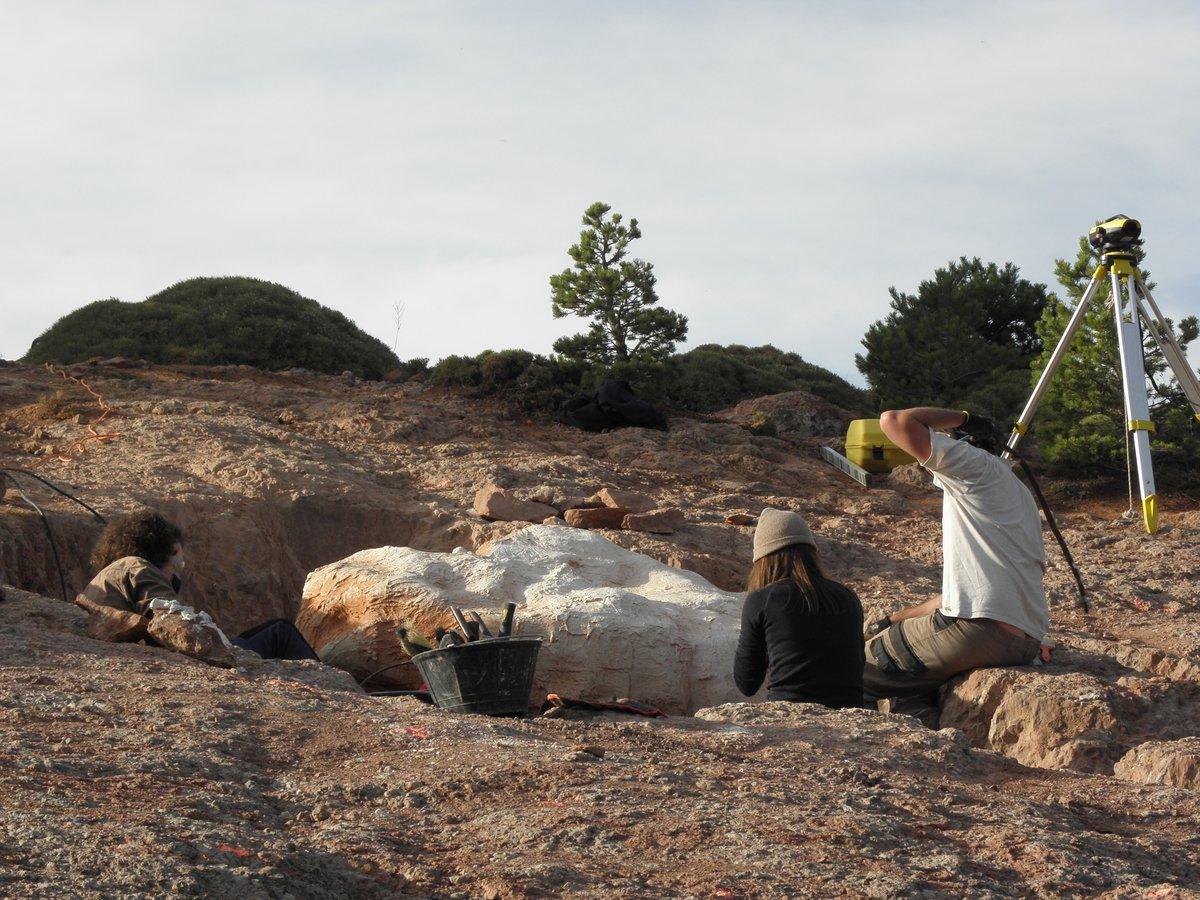 El laburito que lleva lo de excavar huevos... cuando le dices a Miguel Moreno, especialista en #huevos de #dinosaurio que tiene un área de nidificación en ##Loarre, ¡al lado de casa! ...y se pone a pensar a lo grande. Recta final en los trabajos de campo. #dinosaureggs #fossils https://t.co/hbzL5hxSve