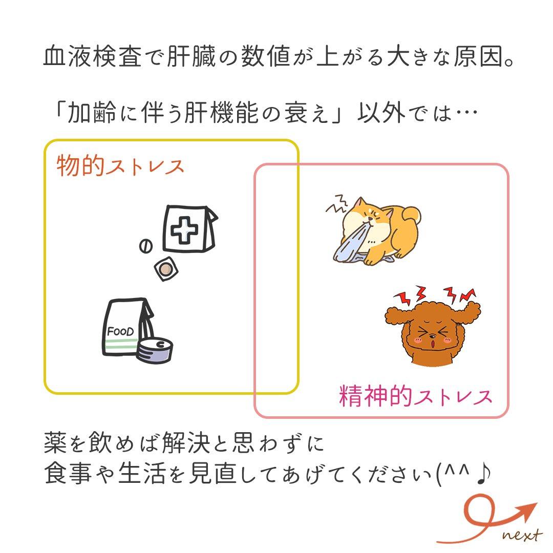 検査 ast 血液