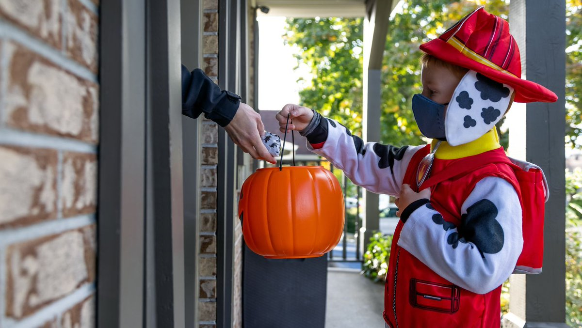 What does or should Halloween look like this year? Doctors weigh in on how we can celebrate this favorite holiday.
