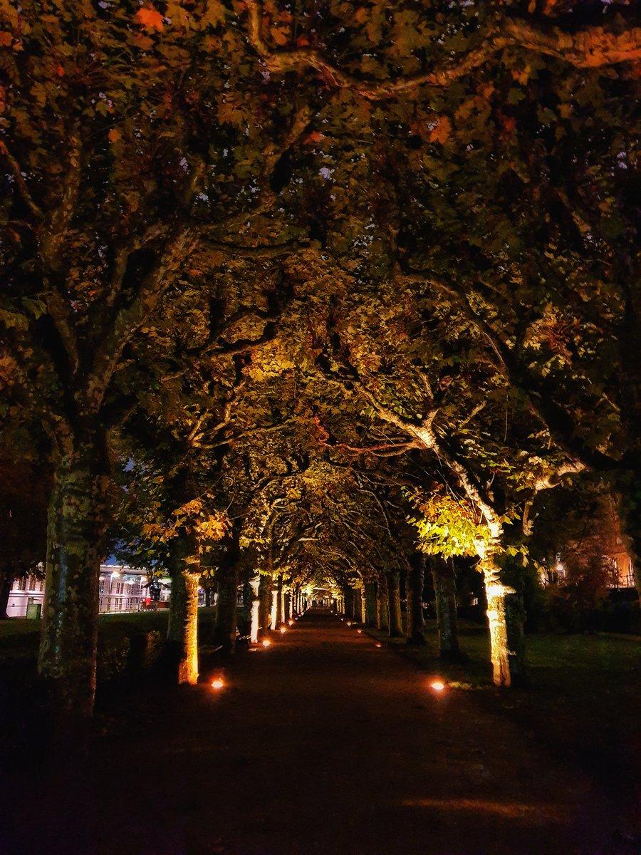 Evening walk in Frankfurt😊