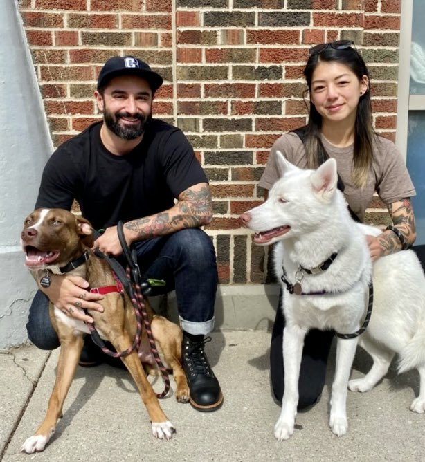 It's #ForeverFriday and so many lucky pups have found their perfect matches! Congrats to Glen Coco (Jesse), Fancy, Marty and Otis.   Our foster families are our real hero's and we thank them for opening their homes and helping to make adoptions like this possible #aliverescue https://t.co/ERJrUkMAkN