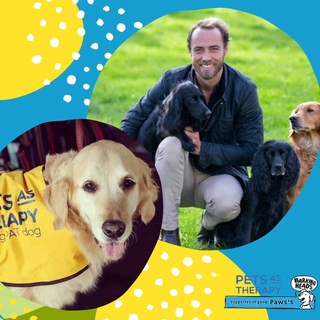 Today is #WorldMentalHealthDay & we want to shout out to our friends at @PetsAsTherapyUK who provide therapeutic support to care homes, hospitals, schools & more. Keep up the fantastic work, we think you're awesome 🙏https://t.co/KMcf36rvoK #BarkingHeads #WorldMentalHealthDay https://t.co/P7Pr95i0pJ