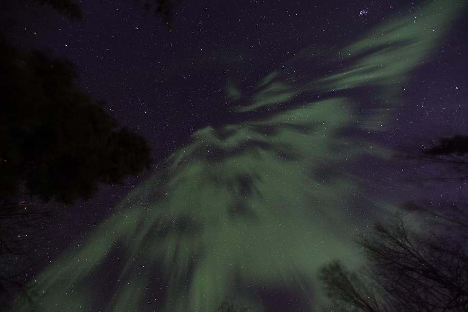 今夜はちょめちょめでベロリンチョンな感じでよかったな❤️  #オーロラハスキーロッジ #オーロラ #フェアバンクス #fairbanks #aurora https://t.co/bsx6jsp1ry