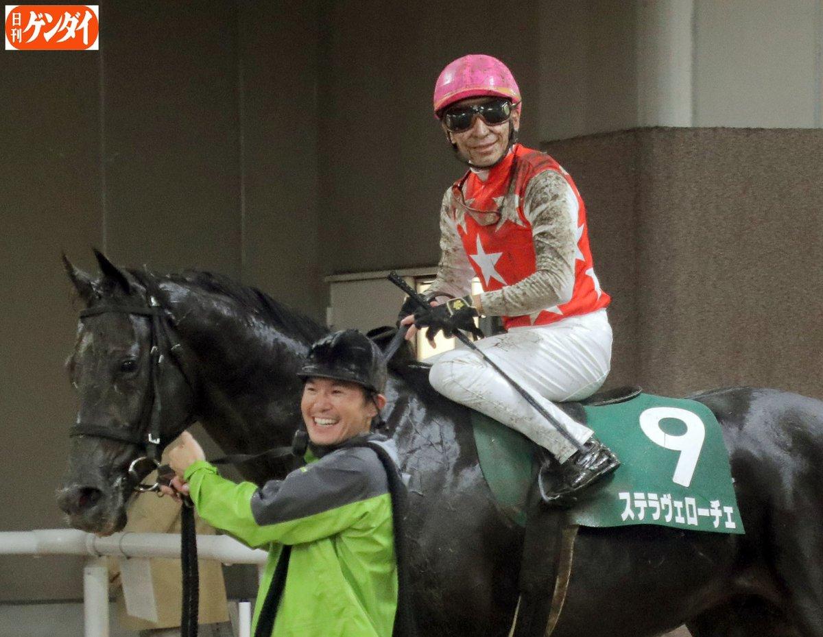 ヴェローチェ ステラ ステラヴェローチェ の競走馬情報
