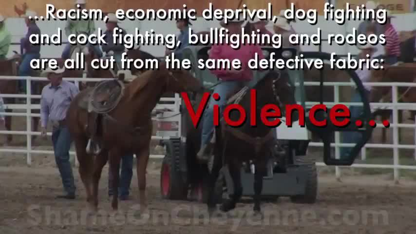 NO excuse for civilized nation to allow #rodeo #AnimalCruelty because ignorant & compassionless #thugs find it fun!  #BanRodeo #Cruel #Tradition #AnimalAbuse #Demented #Pasttime  Sanctioned #animal #abuse #Abolish #Weekend #AnimalLovers #Compassion  #OpRodeo 💙🐂💙 https://t.co/LJtOCv55Jp