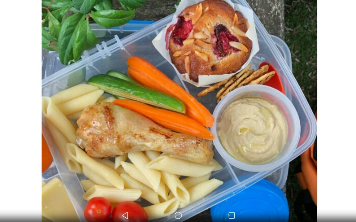 @EdibleCatsClub  @georgiarealist  @Nacho87329549  @Freeds  @dizzydaydream8  @Ophur_Cat   Hello friends.  I've made everybody a nice healthy packed lunch to take with them on today's  walk.  Can you retweet to everybody so that they all know ?  Thank you. Love from Olly Bananas. https://t.co/NPQplrEO5r