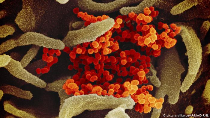 Foto cedida por Ministerio de Ciencia