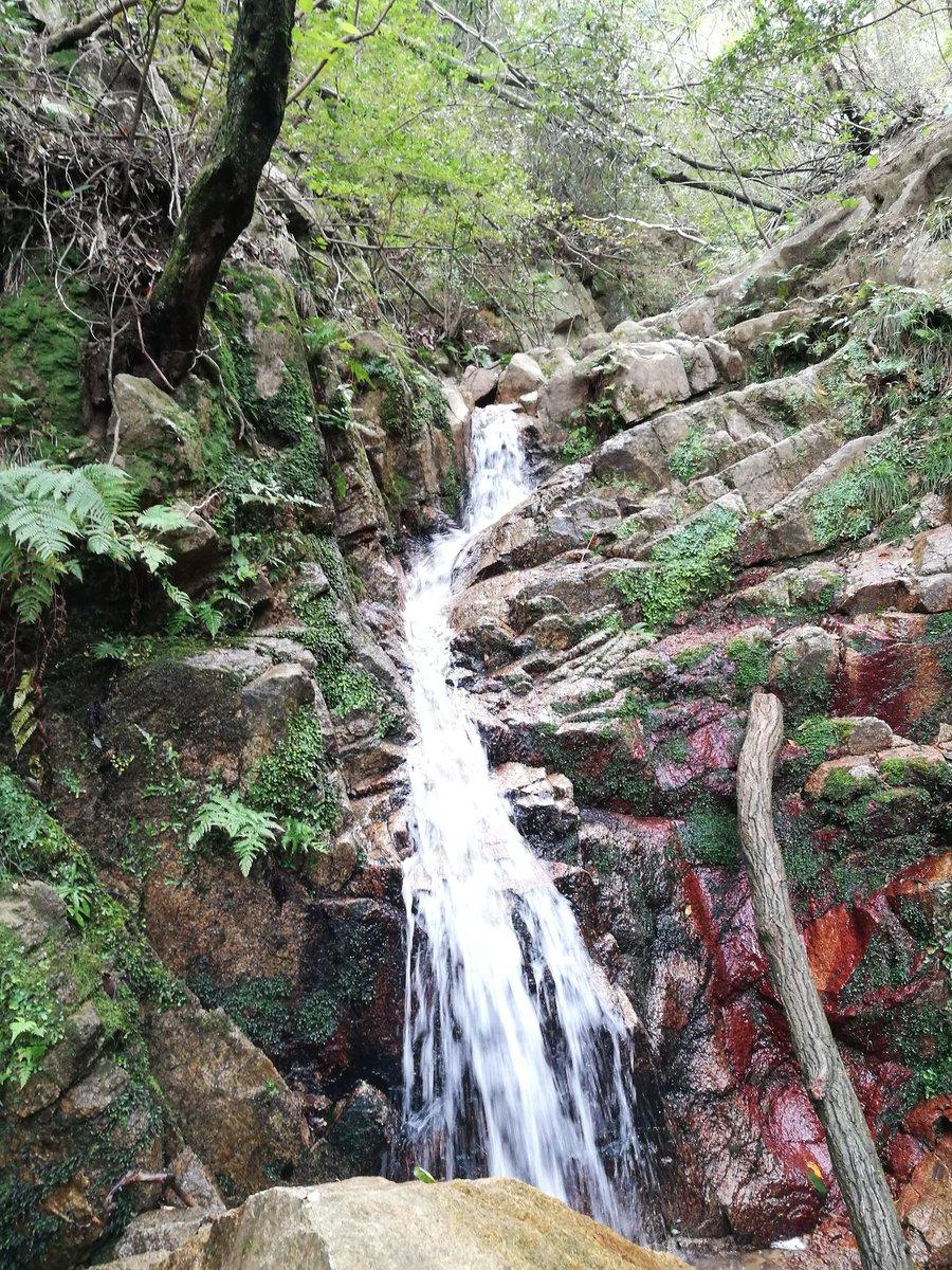 久しぶりに芦屋地獄谷からピラーロックへ。 ちょっとした岩登りに過ぎないけど、やっぱり楽しい😆。 心の底から歓びが湧いてくる! 青空と岩と一体化した気分。 #地獄谷 #六甲山 #ピラーロック #登山 #登山好き https://t.co/BSeSzEusyg