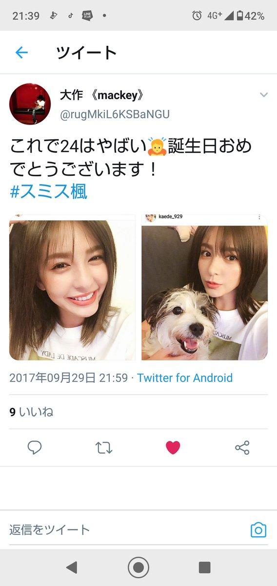 スミス楓 - Twitter Search