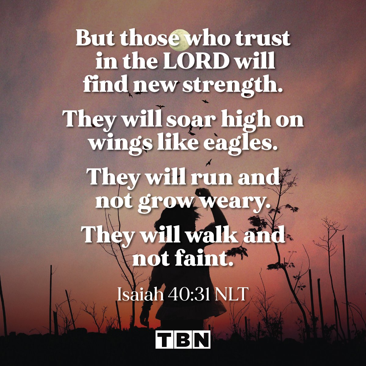 But those who trust in the LORD will find new strength. They will soar high on wings like eagles. They will run and not grow weary. They will walk and not faint. - Isaiah 40:31 (NLT)  #verseoftheday #votd https://t.co/mEMRPTq8tg