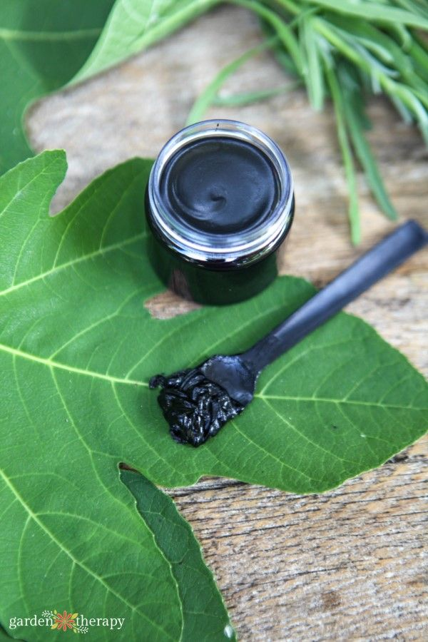 Draw out toxins naturally and ease the pain of minor scrapes with charcoal. Activated Charcoal Drawing Salve Recipe for Bug Bites, Blisters, Splinters: https://t.co/ByI0FJzcqP #gardentherapy #charcoal https://t.co/SJApycRQ1g