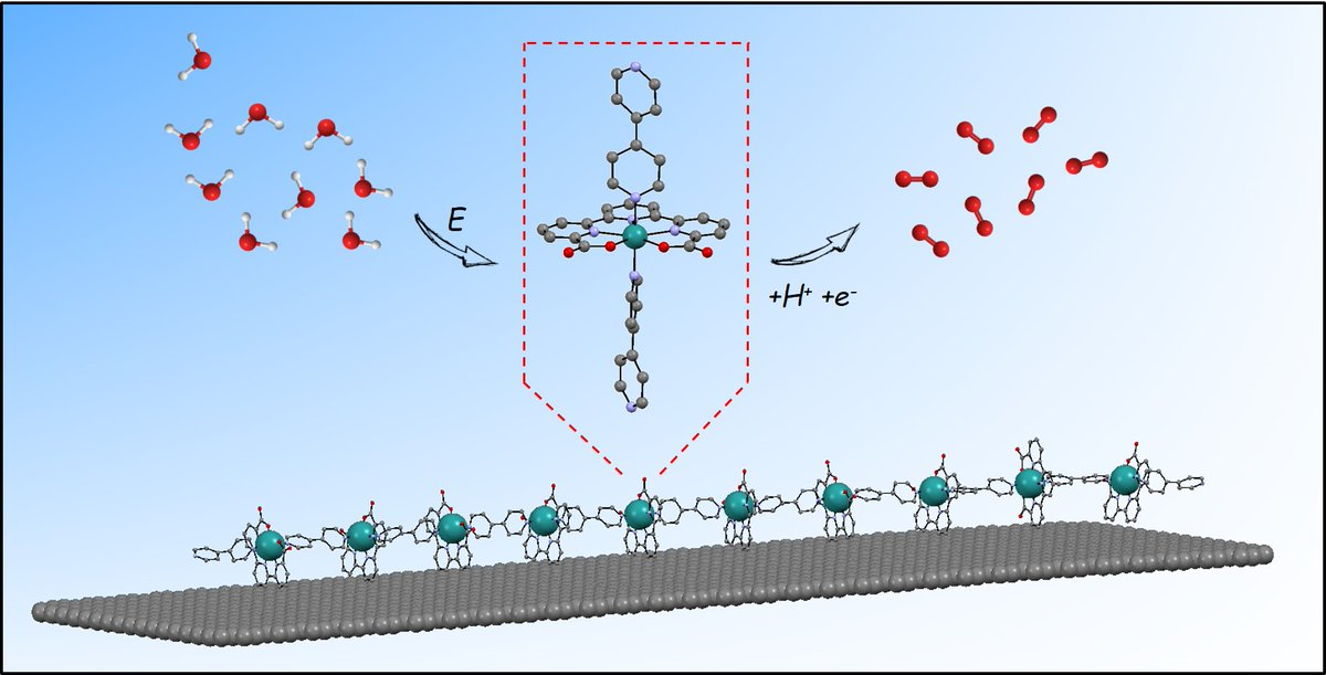 Researchers from Llobet & @MaserasGroup group have developed a new #catalyst for #wateroxidation that achieves unprecedented current densities for molecular catalysts @NatureChemistry @IMDEA_Nano @ALBAsynchrotron @radboudscience @maxplanckpress Read more: https://t.co/0QVQdJVp7Q https://t.co/8S5Nqb0GAu