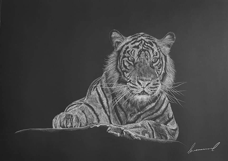 #be #Lion https://t.co/0o8y39IFd1
