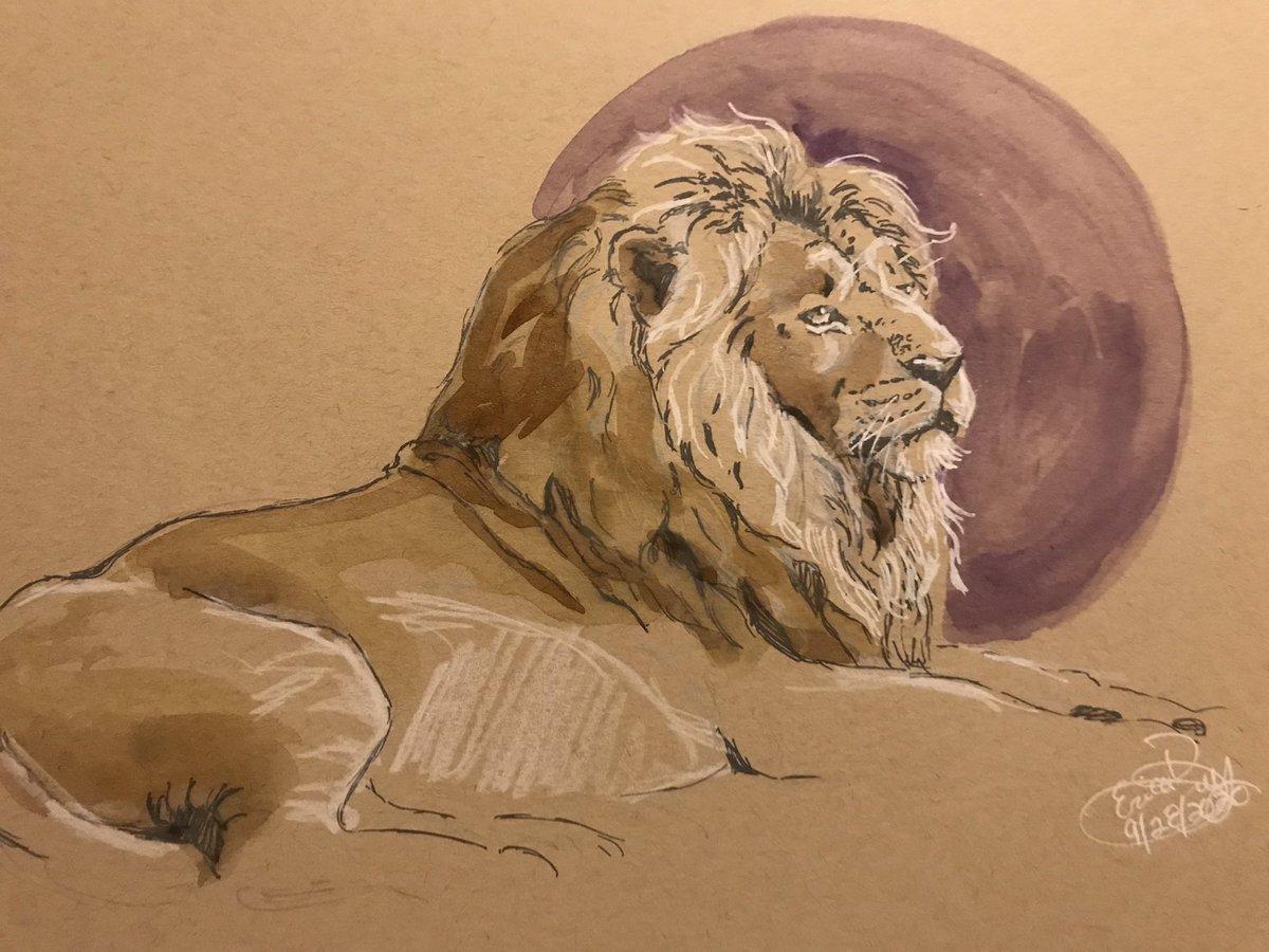 Ink and watercolor. #ink #watercolor #lion #arteveryday #animalart #wildlife #conservation https://t.co/JUuZsbXD2X