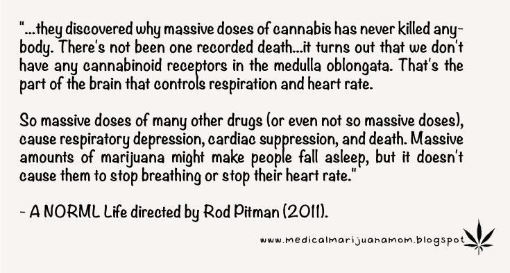 Medical Marijuana and other plants are the right way to treat diseases. #righttotry #MedicalMarijuana #plantsnotpills https://t.co/7yPZrjkO1H