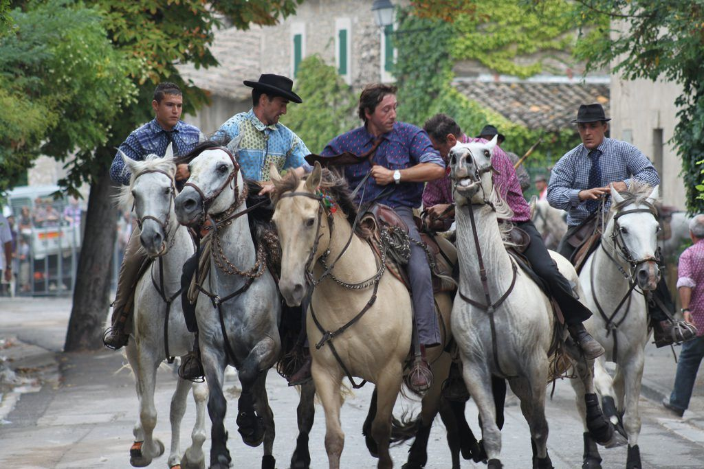 Cowboy Culture in Provence https://t.co/linlLrgudG @PerfProvence #welovememoirs @Arles365 @LuberonProvence @StRemyTourisme https://t.co/PWq1qV3Mra