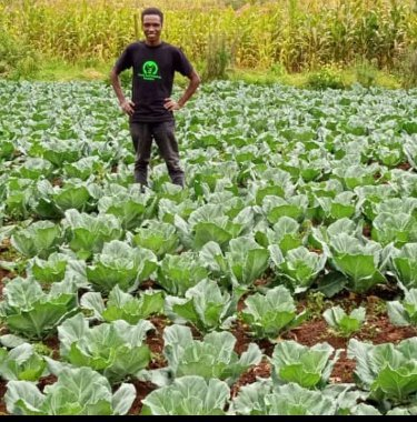 #youth it's time we work together for  our exceptional contribution towards  development of #agriculture sector to end #youthunemployment let's venture into #agribusines @TabiJoda1 @KIMONEKKIMONE @nduramoses2 @JamesNderui1 @Agri_FinanceKe https://t.co/f15TsuHKW3