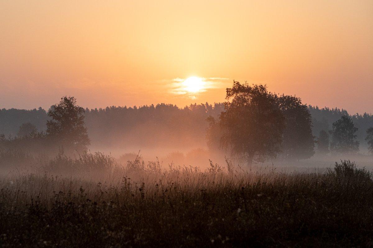 RT @Immor07: Syksyisen aamun kauneutta II #luonto #aamu #syksy https://t.co/0xwv36IFWa