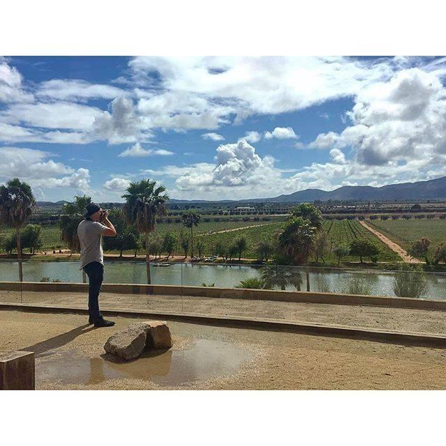 Esta es la vista que nos ofrece @Monte_Xanic ¡Ven y conócelo! #ValleDeGuadalupe #RutaDelVinoBC 🍷  https://t.co/0kBh2JMXzN  📷josh_bond  #BajaCalifornia #FelizLunes #HappyMonday #Ensenada https://t.co/HuMWtrwa89