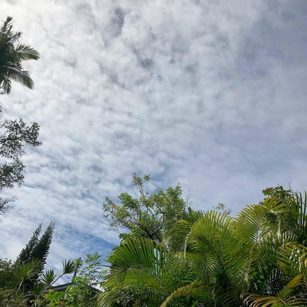 9/28/20 27℃  #aloha #ハワイ #ハワイ島 #ハワイ暮らし #朝空 #空 #イマソラ #hawaii #bigisland #hawaiilife #morningsky #sky #skygram #ig_hawaii #instasky https://t.co/J3wbm4Bthh https://t.co/GuxKVtVp1X